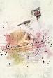 Softly Kit by Vicki Robinson sample page 04