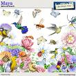 Maya Birds and Insects by Aftermidnight Design