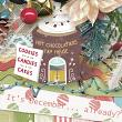 This is Me December Kit Detail; by Snickerdoodle Designs