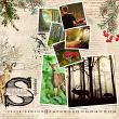 Layout by Marie Orsini using Nordic Woods Kit by Aftermidnight Design
