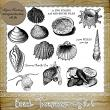 Beach Treasures - Set 2 - 11 PNG Stamps and ABR Brushes by Idgie's Heartsong