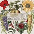 Wheel Of The Year Lughnasadh Vintage Botanicals by On A Whimsical Adventure