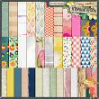 Be The Magic digital scrapbook papers by Tracy Martin Designs