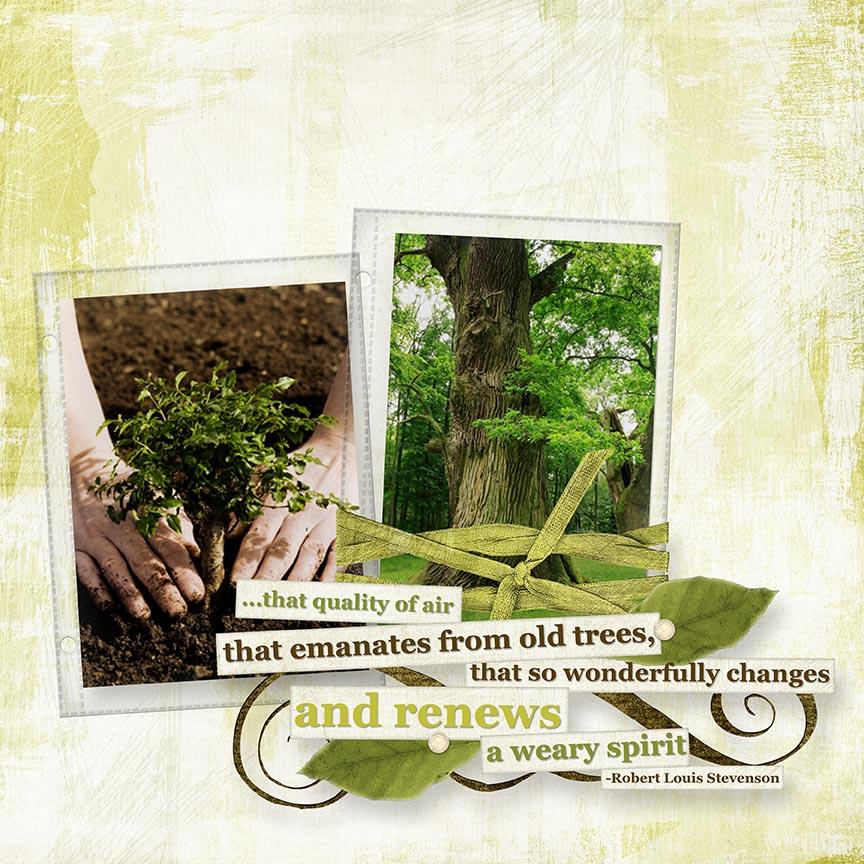 """Old Trees"" #digitalscrapbooking layout by AFT Designs - Amanda Fraijo-Tobin @Oscraps.com"