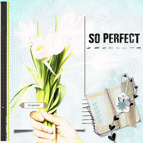 A Perfect Day by Vicki Robinson Layout 8