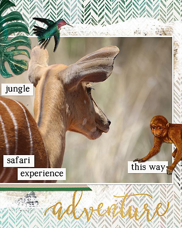 Layout using Jungle Journal