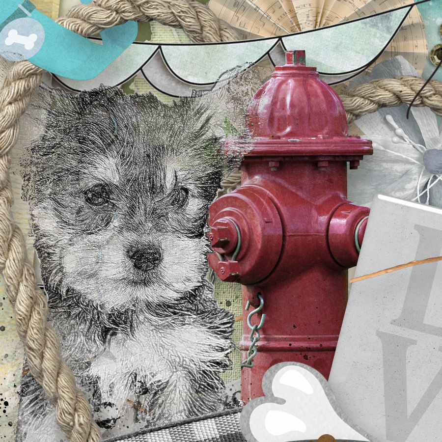 Love My Dog Close Up by Snickerdoodle Designs