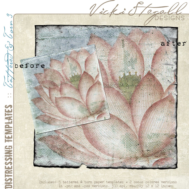Vicki Stegall - Tattered & Torn 3 Distressing Templates example