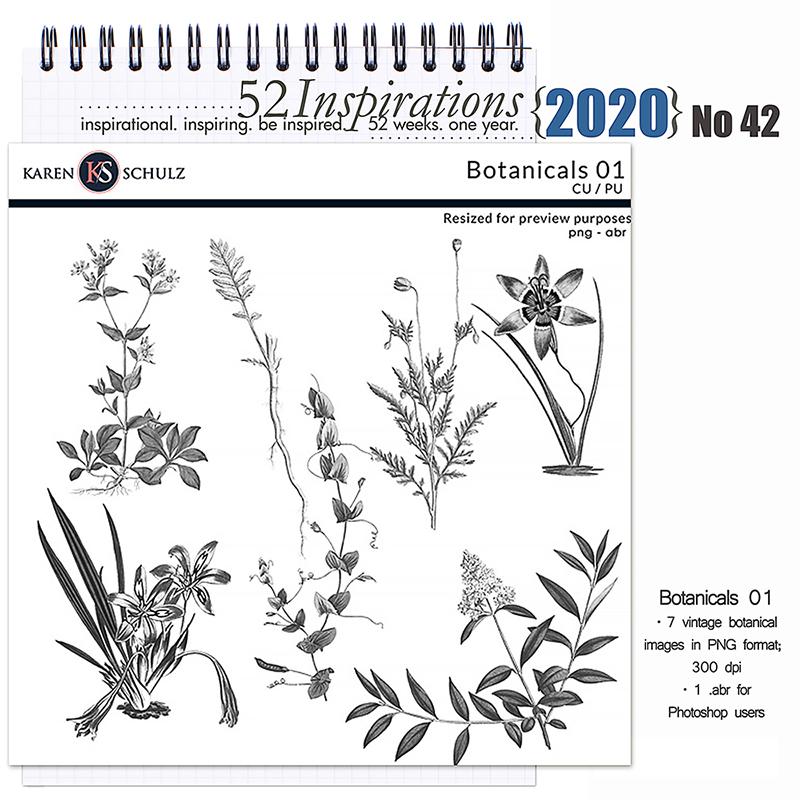 52 Inspirations 2020 No 42 Botanicals 01 Stamps by Karen Schulz