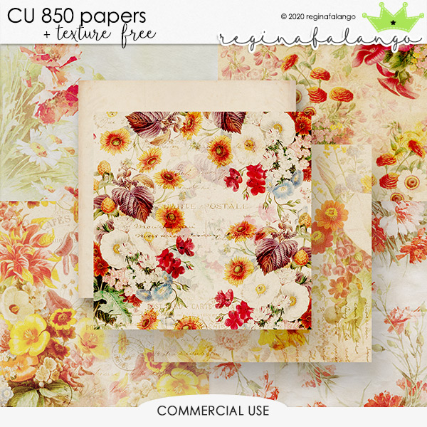 CU 850 PAPERS