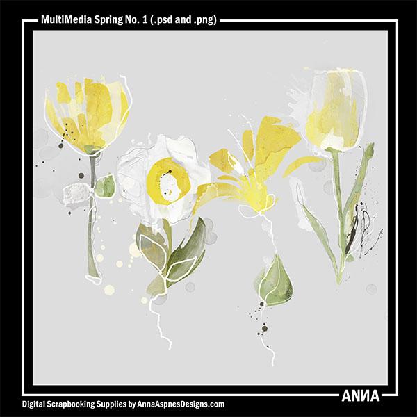 MultiMedia Spring No. 1