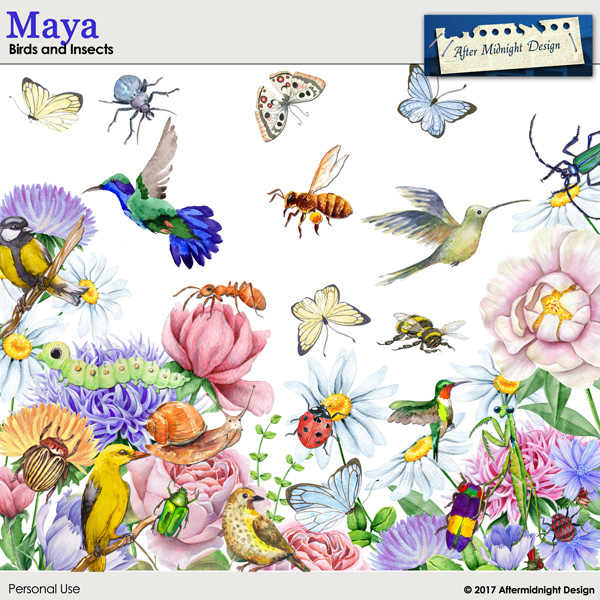 Maya Birds and Insects