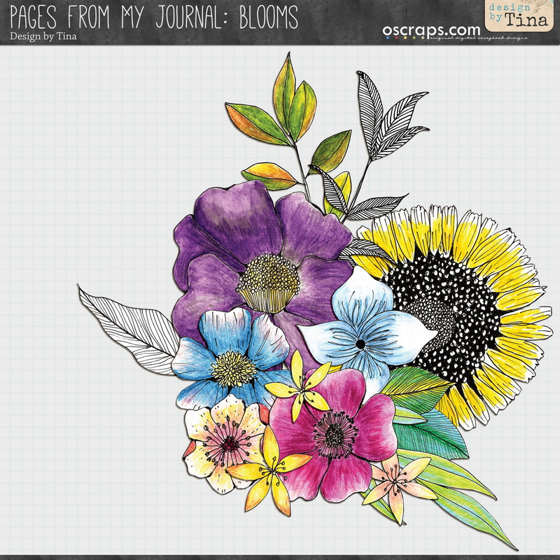 Pages From My Journal: Blooms