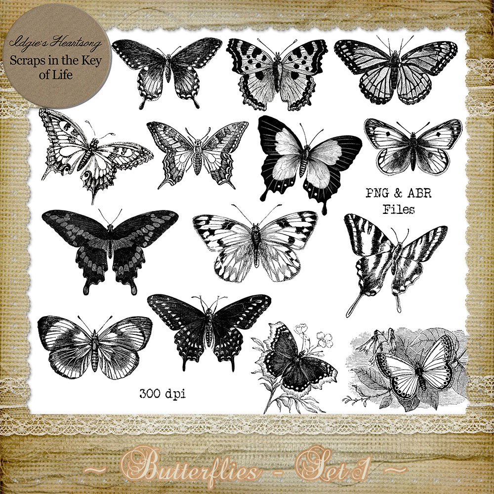 Butterflies - Set 1 by Idgie's Heartsong