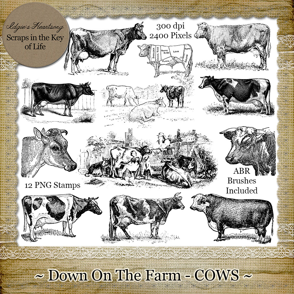 Down On The Farm - COWS - 12 PNG Stamps and ABR Brush Files by Idgie's Heartsong