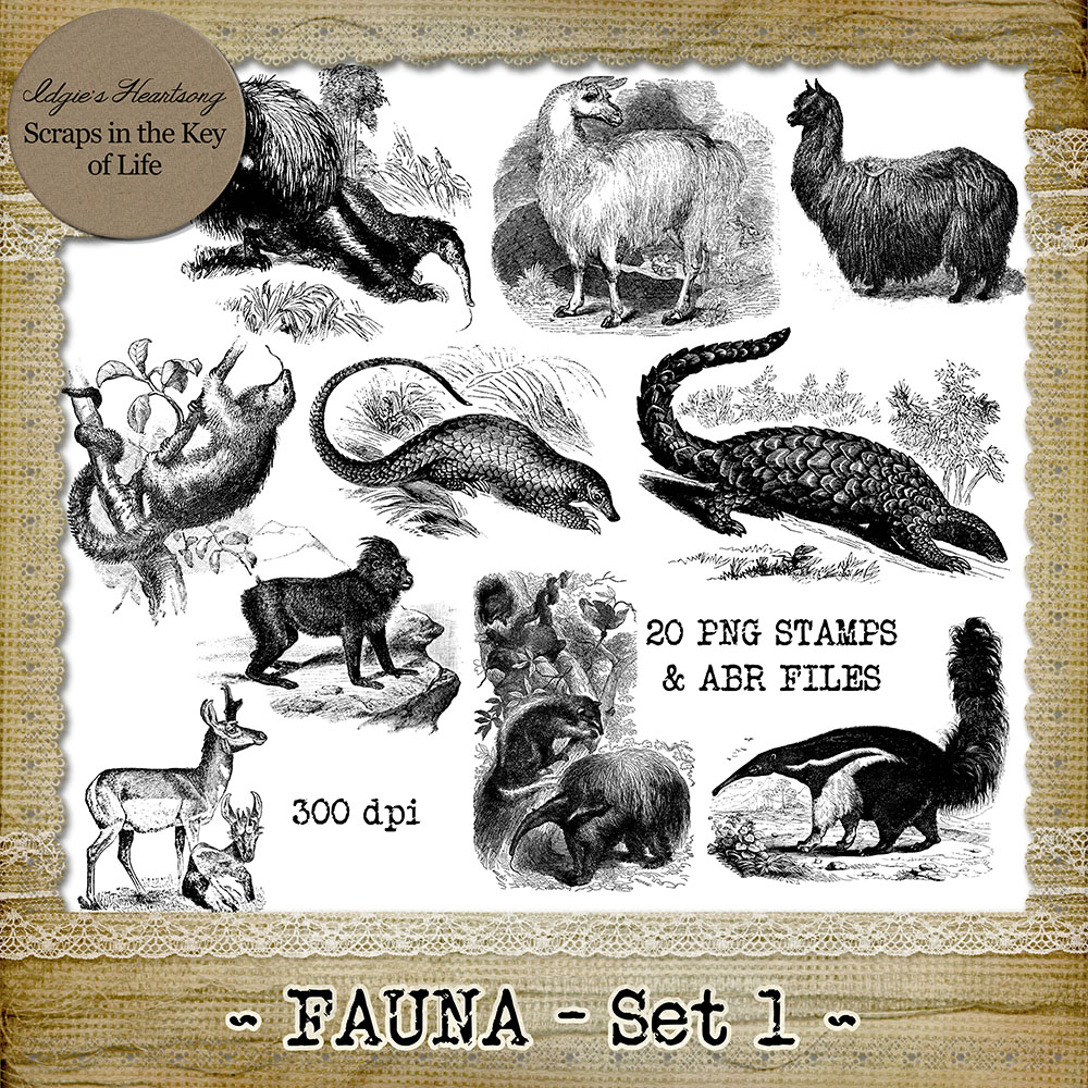 FAUNA - Set 1 - 20 Vintage PNG Stamps and Brushes by Idgie's Heartsong