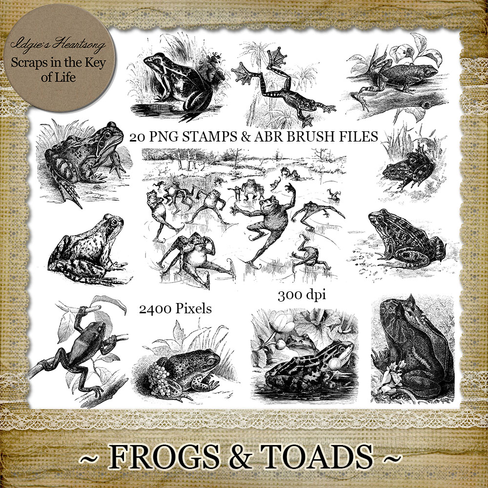FROGS and TOADS - 20 Vintage PNG Stamps and Brushes by Idgie's Heartsong
