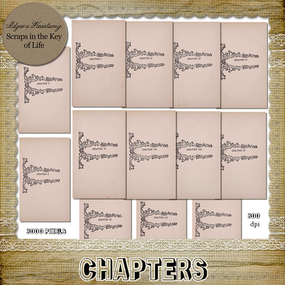 CHAPTERS - 13 PNG Journaling Pages by Idgie's Heartsong
