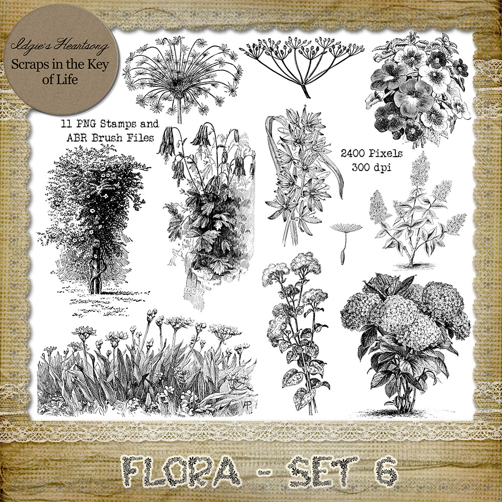 FLORA - Set 6 - 11 PNG Stamps and ABR Brush Files by Idgie's Heartsong
