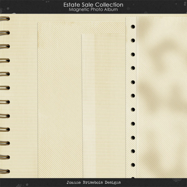 Estate Sale Collection: Magnetic Photo Album