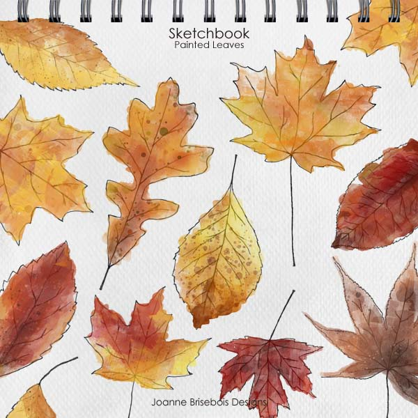 Sketchbook Painted Leaves
