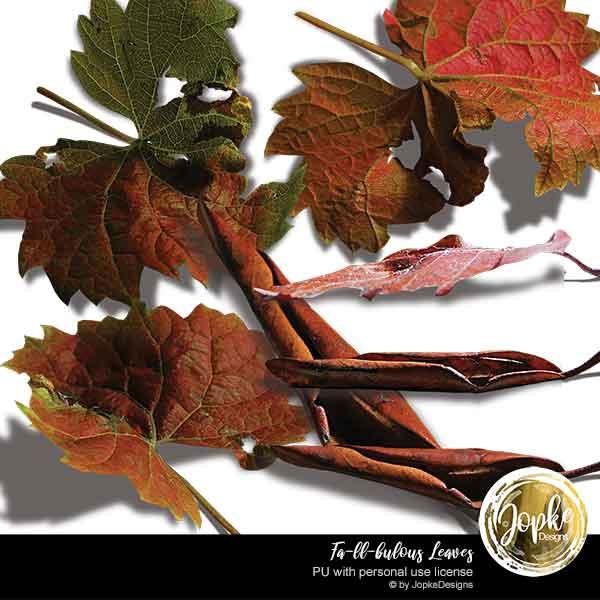 Fa-ll-bulous Leaves