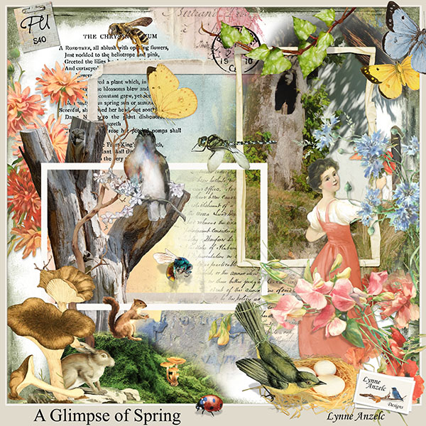 A Glimpse of Spring