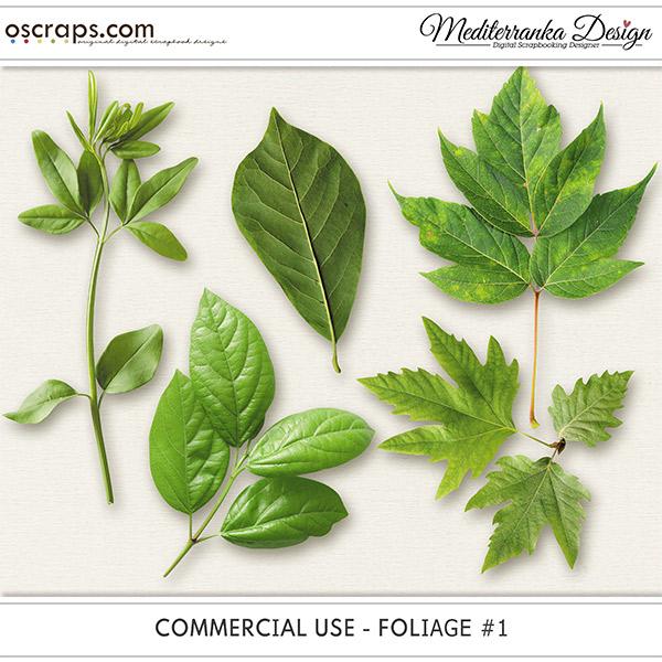 CU - Foliage #1