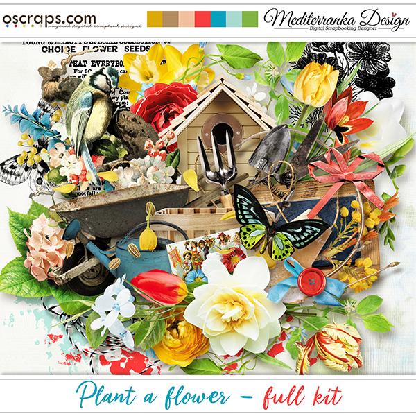 Plant a flower (Full kit)