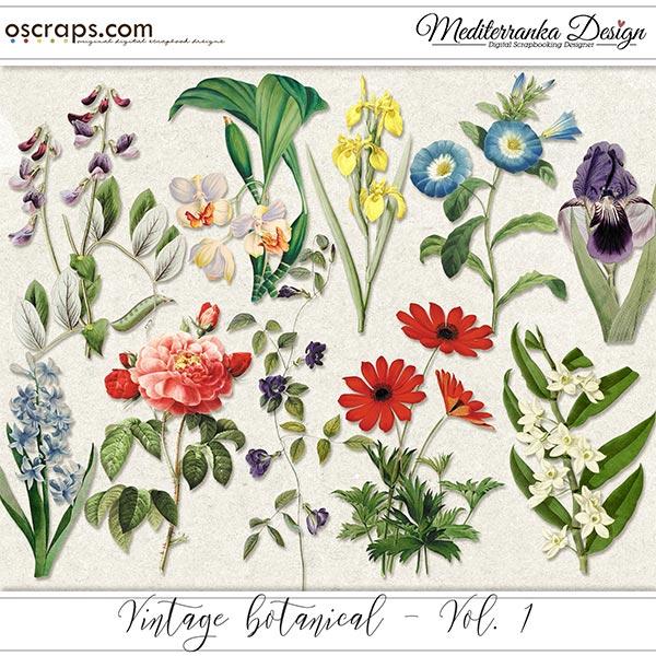 Vintage botanical - vol. 1