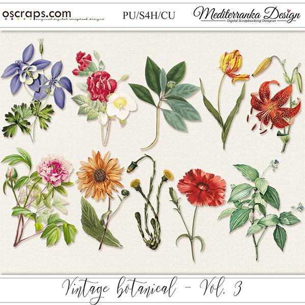 Vintage botanical - vol. 3