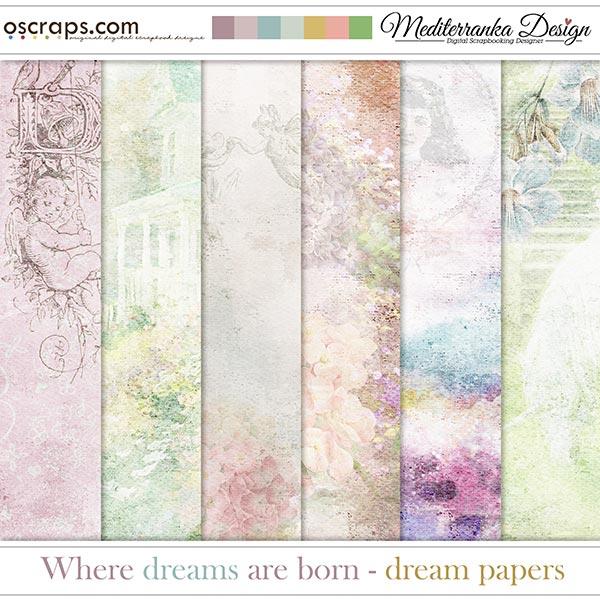 Where dreams are born (Dream papers)