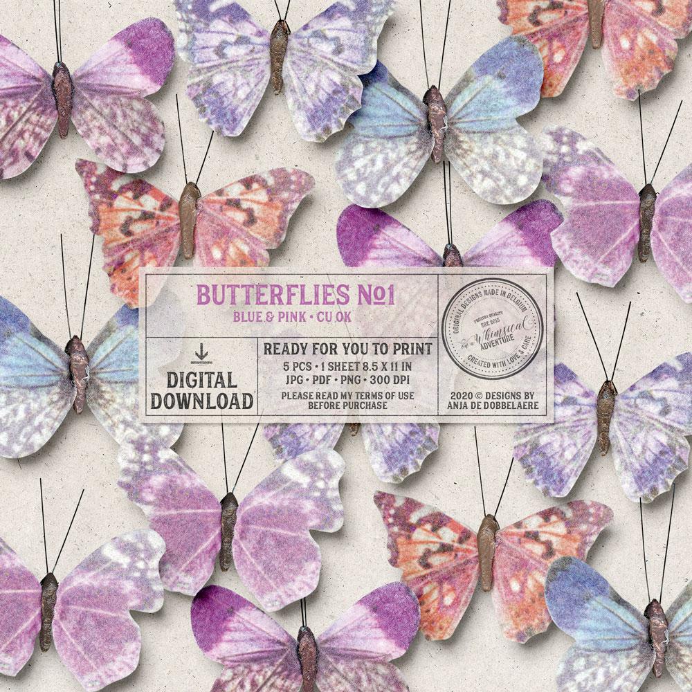CU Butterflies No1