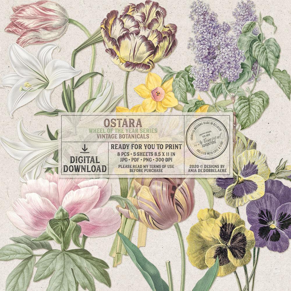 Wheel Of The Year Ostara Vintage Botanicals