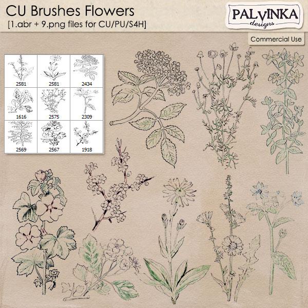 CU Brushes Flowers