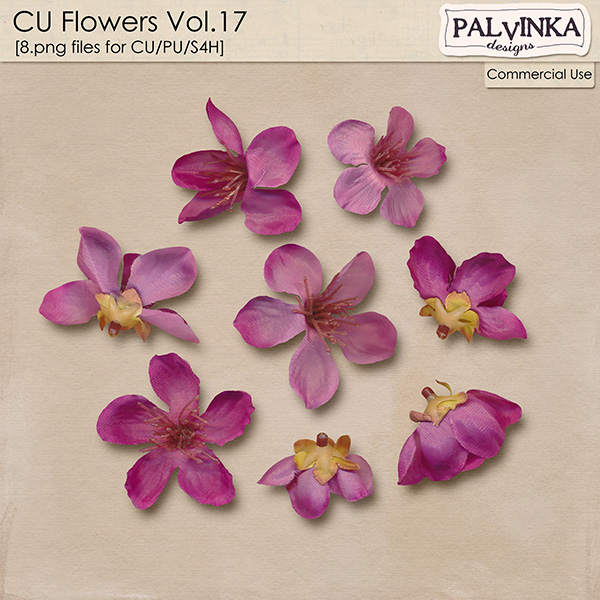 CU Flowers 17