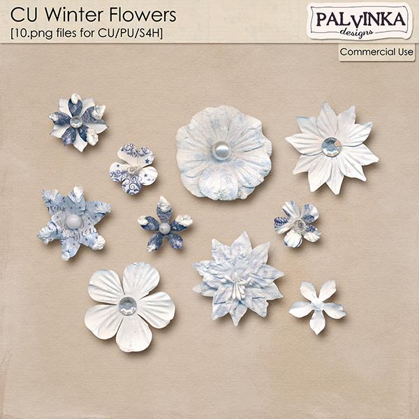 CU Winter Flowers