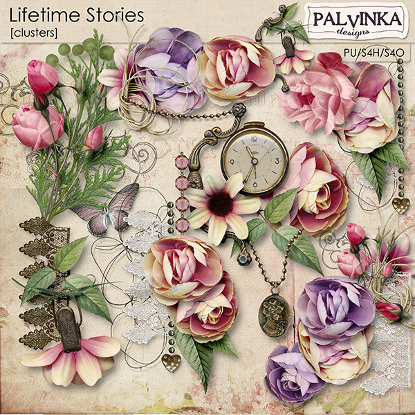 Lifetime Stories Clusters