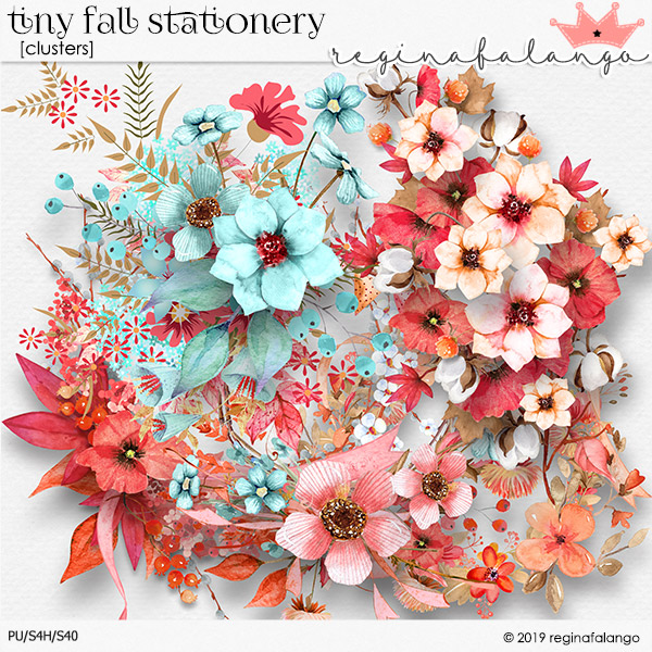 TINY FALL STATIONERY clusters