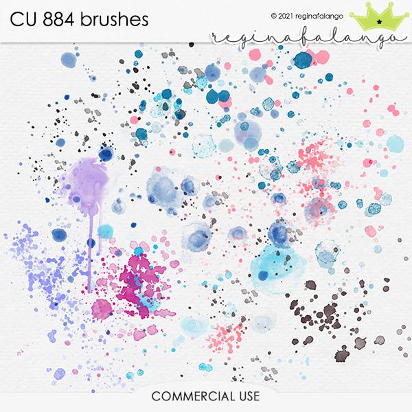CU 884 BRUSHES