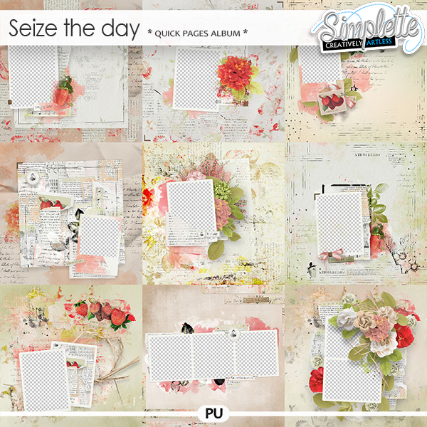 Seize the Day (quick pages album) by Simplette