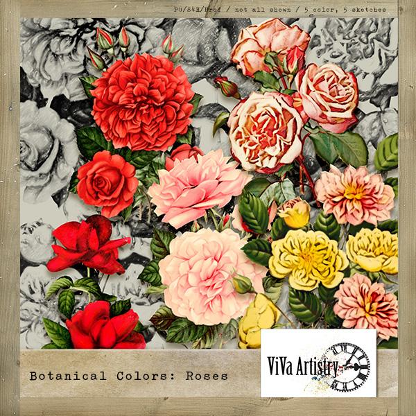 Botanical Colors: Roses