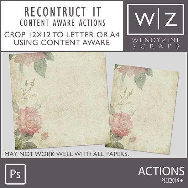 ACTION: Reconstruct It CA