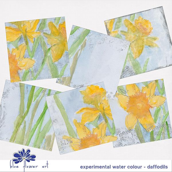 Experimental Watercolour - Daffodils