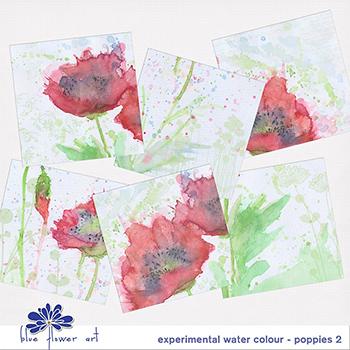 Experimental Watercolour - Poppies