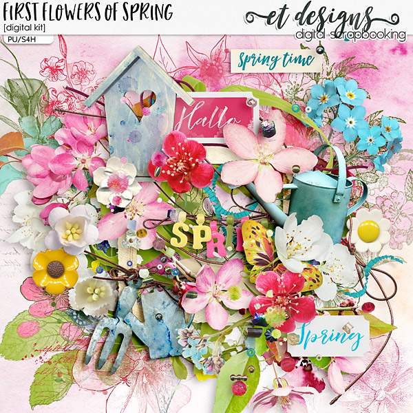 First Flowers of Spring Kit & Solids