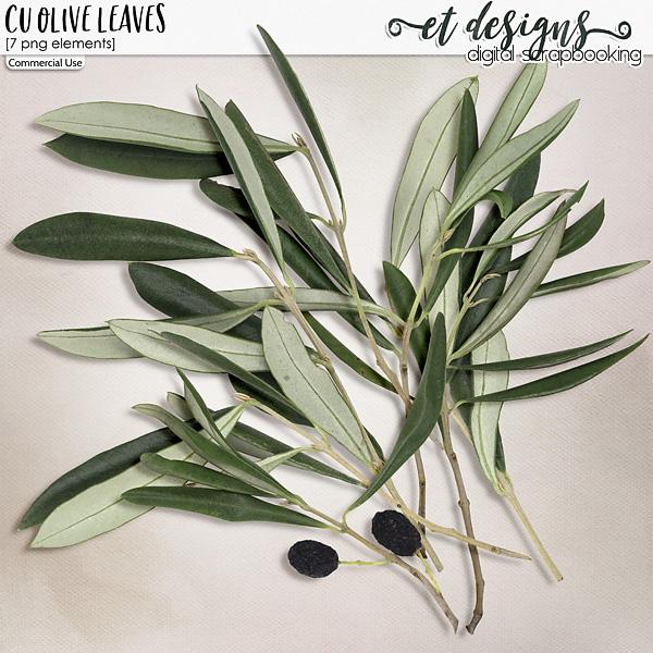 CU Olive Leaves