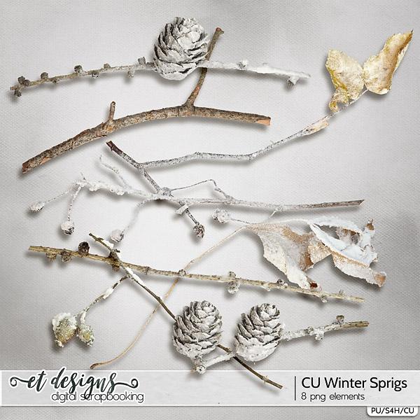 CU Winter Sprigs