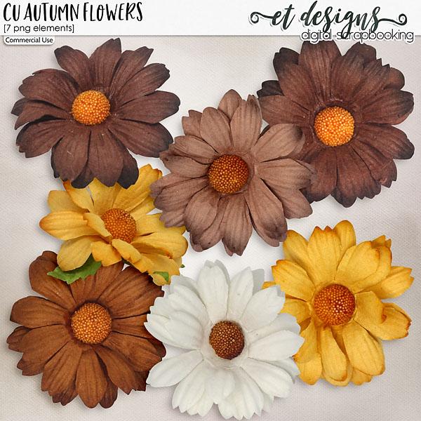 CU Autumn Flowers