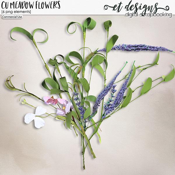 CU Meadow Flowers